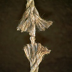 Stress- When you are at the end of a frayed rope