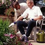 nursing home expert witness